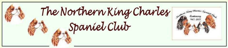 Northern King Charles Spaniel Club